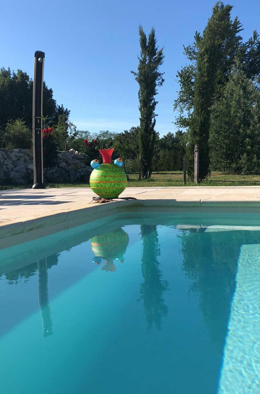 Borowski-gruener-Frosch-am-Pool